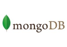 dokumentenorientierte NoSQL-Datenbank
